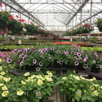 Grisamore Farms Garden Center