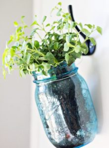 Hanging Herb Planter