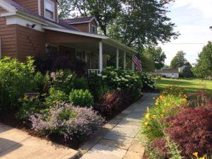 Easy Care Gardening