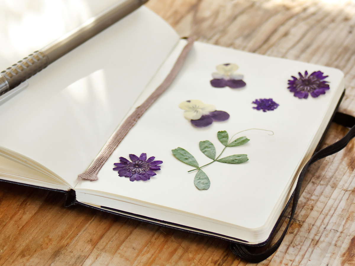 create your new year plant journal dried flowers